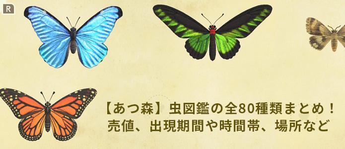 タマムシ あつ 森 【あつ森】タマムシ【あつまれどうぶつの森】