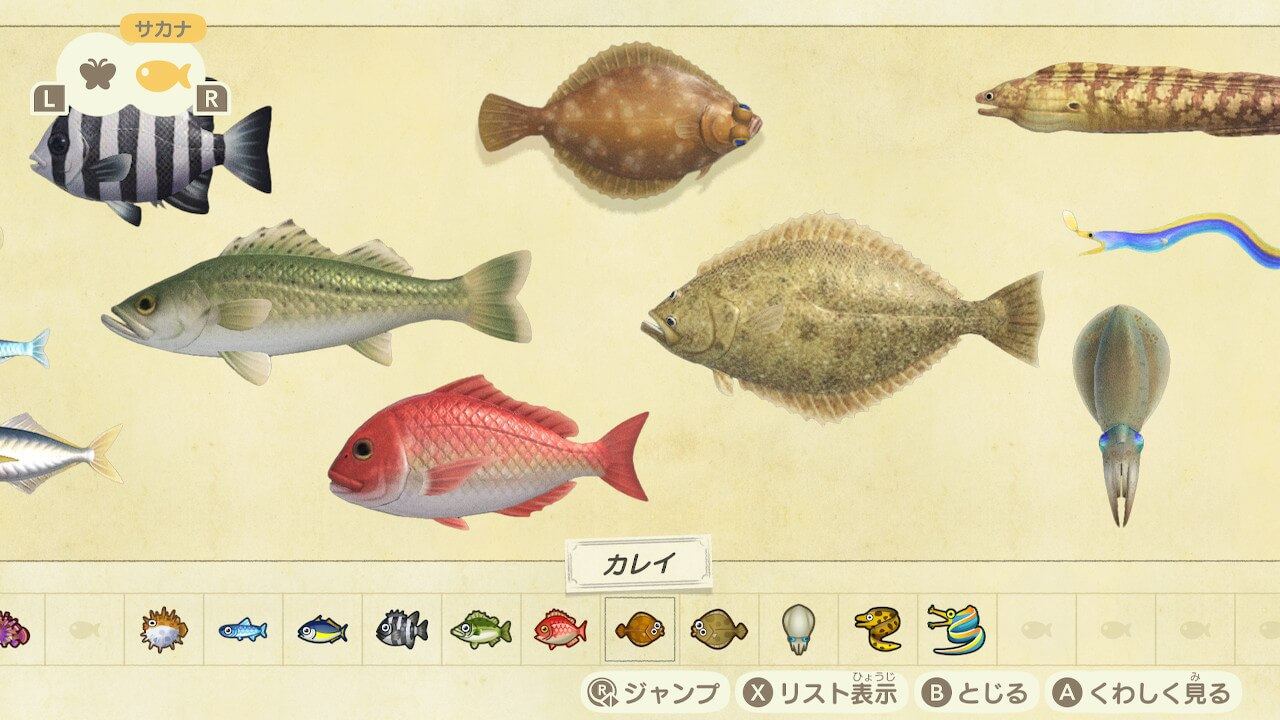 あつ森10月 魚